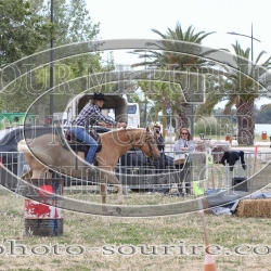 2019©Laurent-Simon-camargue-1371